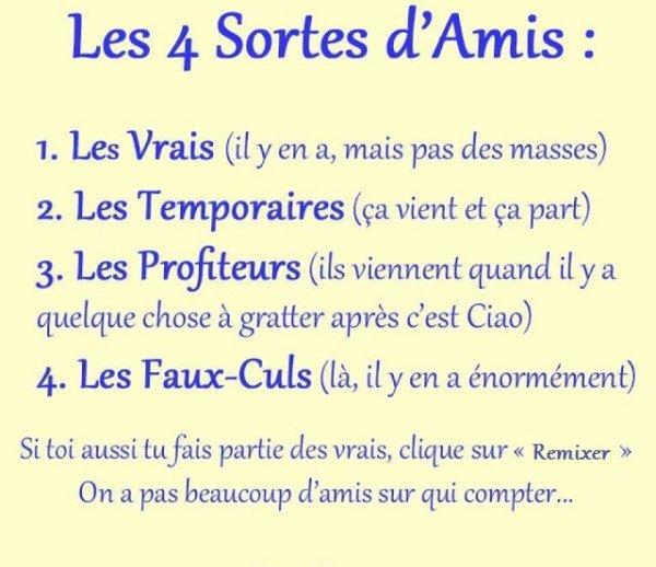 Les 4 Sortes D'Amis. ♥