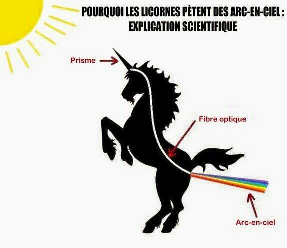 Les licornes *-*  Pourquoi elles pètent des arc-en-ciel ?:D