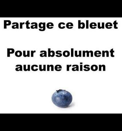 Partagez ce bleuet ✌. ❤