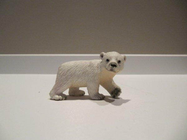 Bébé ours polaire 2¤