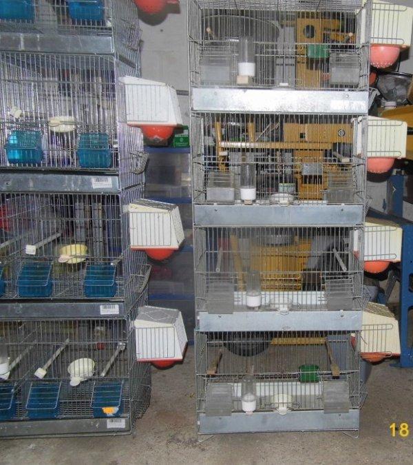 nouvelle cages