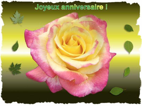 Joyeux Anniversaire Jocelyne Moa Et Ses Photo Des Antilles Et Lyon