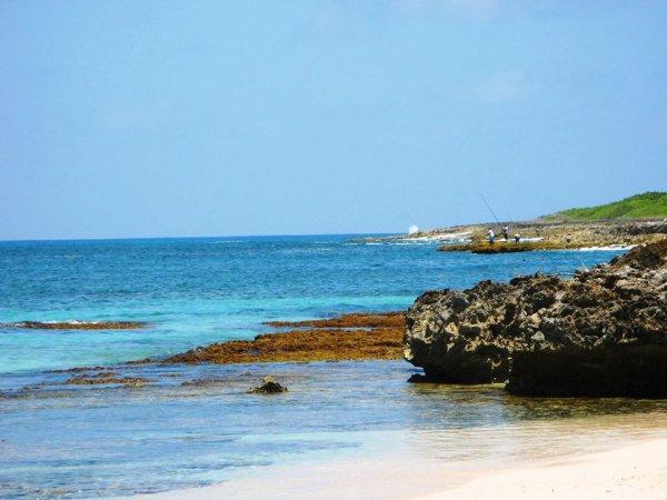 la plage de petite Anse est ... saisonnières