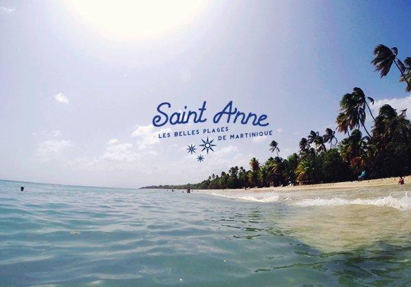 citée comme la plus belle plage de Martinique, la plage des Salines est une Longue bande de sable blanc, bordée de cocotiers,