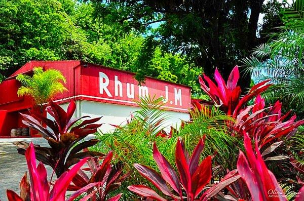 Le rhum JM est un rhum agricole produit depuis 1845 à Macouba, dans le nord-est de l'île de la Martinique