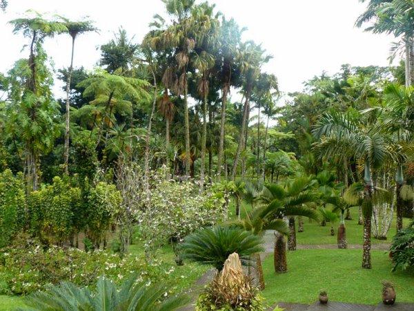 J'avoue que je suis toujours séduite par les jardins car chaque jardin a sa poésie dont son concepteur est un artiste, un poète,