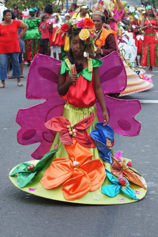 Un autre joli petit papillon qui butine un Floup!!!  La Reine du Carnaval  de Basse Pointe