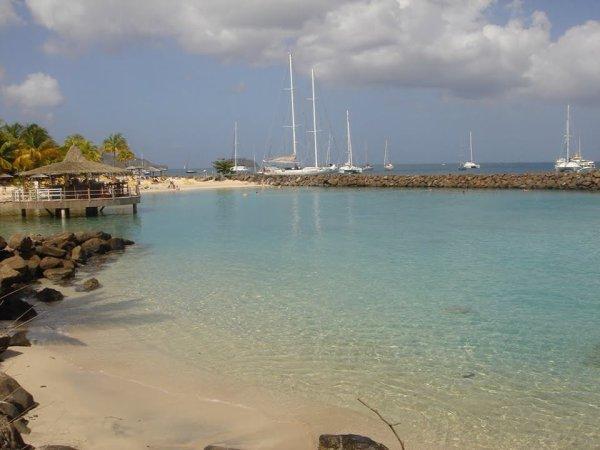 De bon matin, Les Salines vous accueilleront avec sa superbe plage de sable blanc en arc bordée d'une palmeraie, avec la mer turquoise et translucide des Caraïbes.