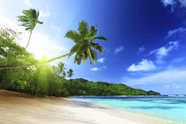 Découverte des plages paradisiaques