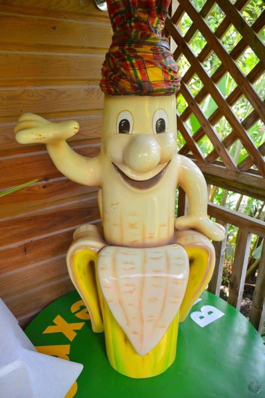 Fait main   Chaise À Base De Banane Feuilles Salon De Meubles