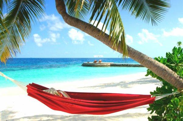 Savez-vous quoi faire pour les vacances ?REPOS
