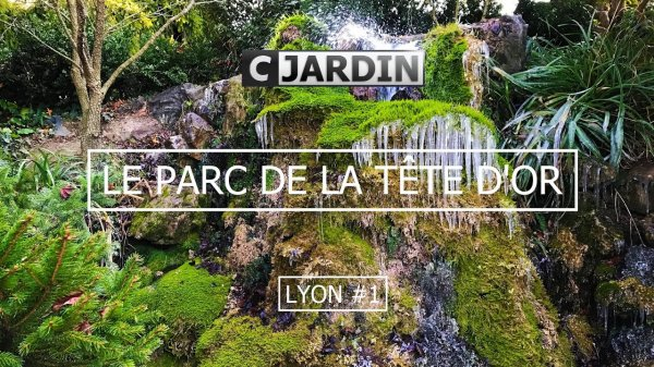 Situé sur les berges du Rhône, en plein c½ur de Lyon, ses 117 hectares, font du Parc de la Tête d'Or,