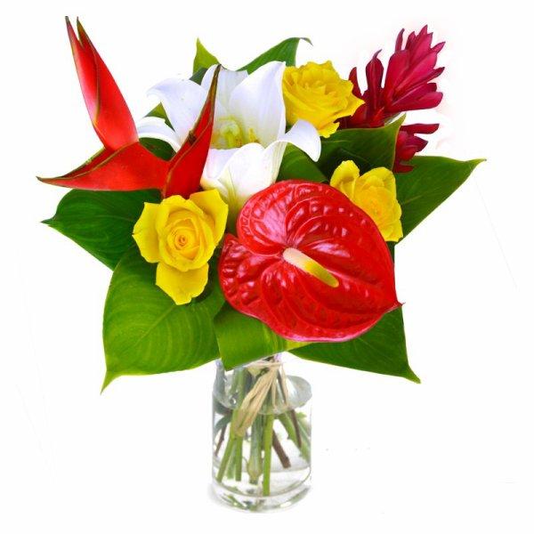 On ne doit jamais battre une femme, même avec une fleur », Jean Anouilh, écrivain français.