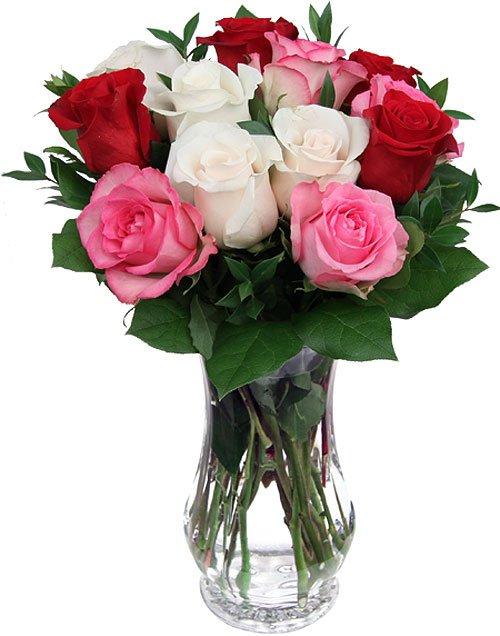 Il est d'étranges soirs où les fleurs ont une âme », Albert Samain, poète français.