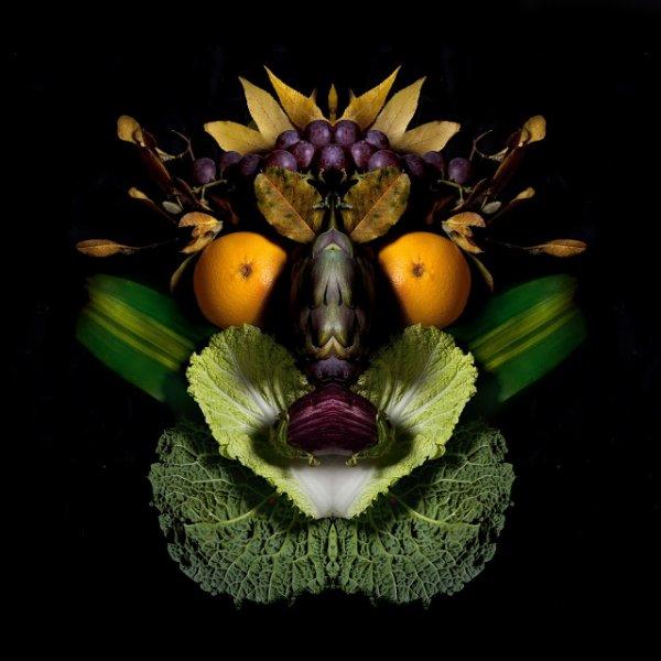 Images correspondant à les animaux fruits et créa de l automne