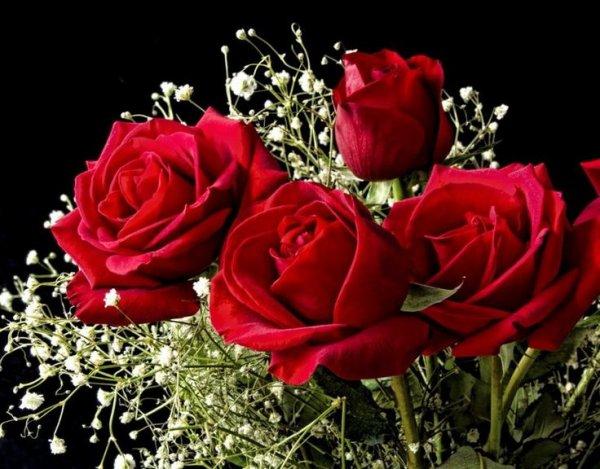 4 Roses - Amour unique