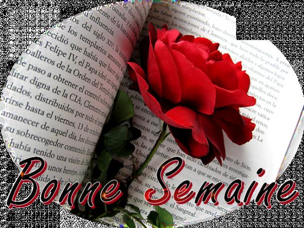 BONNE SEMAINE LES AMI (ES)