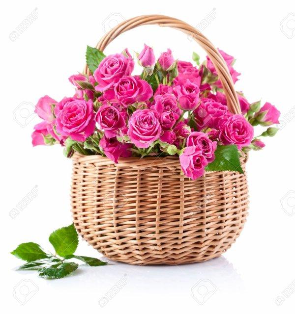 Rosiers Panier en osier Rose couleur