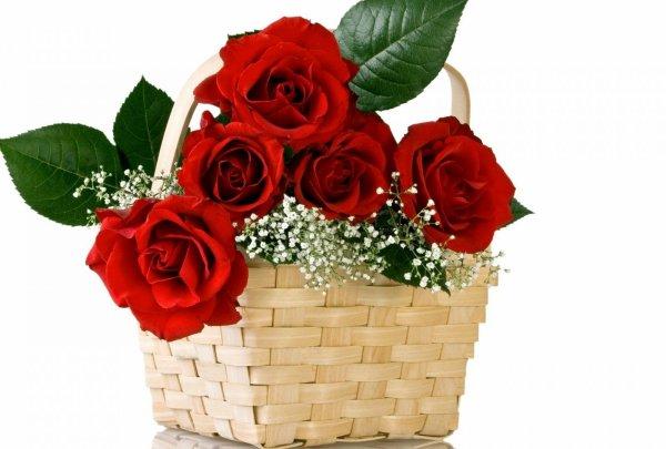 Roses Rouge panier En Osier