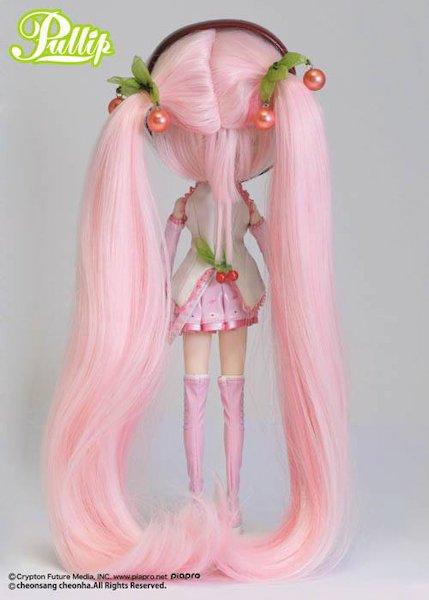 Avis sur la pullip Miku Sakura