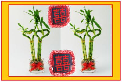 """XIN  NIAN  HAO ! :) avec ...    le symbole du double bonheur est un talisman précieux ... et """" 新 年 快 乐 ! """" 与 双 """"喜喜""""  是一种珍贵的护身符和 """" 幸运 竹 """" 是 充电的积极的能量 . le bambou lucky charge de l'énergies positives ..."""