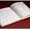 """Fiction 1# : """"Cher journal """""""