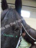 Photo de Ma-life-the-horses-x3