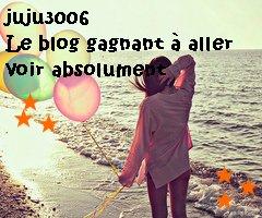 juju3006, blog gagnant !