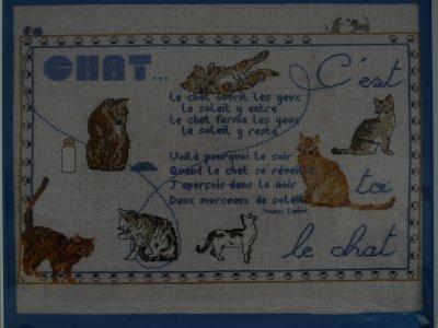 """tableau de chat """"planete mauve"""""""