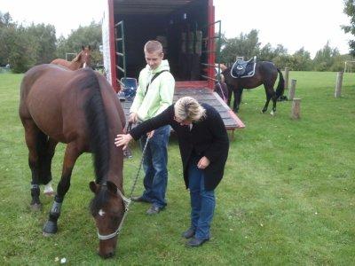 le cheval et moi