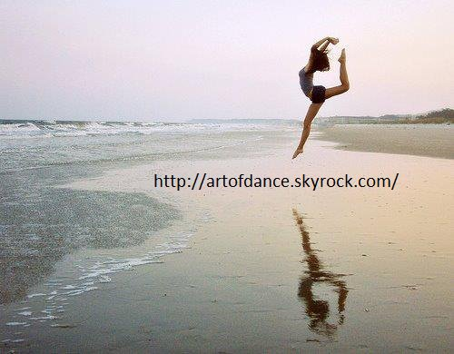 Bienvenue sur le blog de ArtOfDance ! ♥