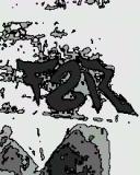 Photo de F2R-Ratz