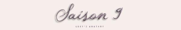 Grey's Anatomy : Saison 9