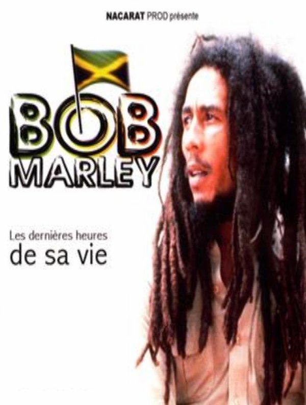 DOCUMENTAIRE : BOB MARLEY - Les Dernières Heures De Sa Vie