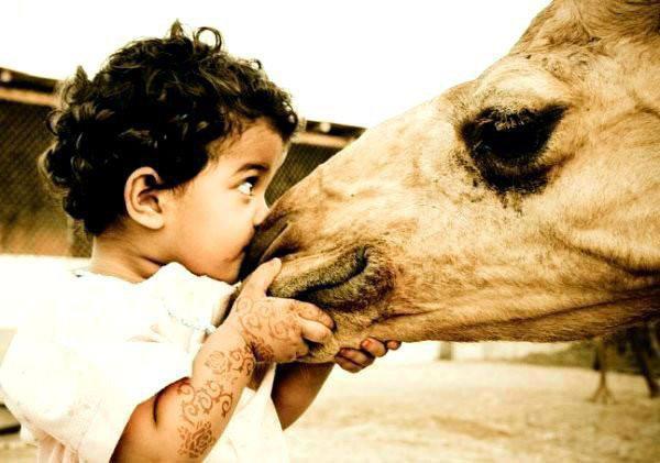 Le Messager d'Allah (que la paix et le salut d'Allah soient sur lui) a dit : « Les rassasiés dans cette vie sont les affamés dans l'au-delà. » Tabarâny et authentifié par Albâny ♥♥