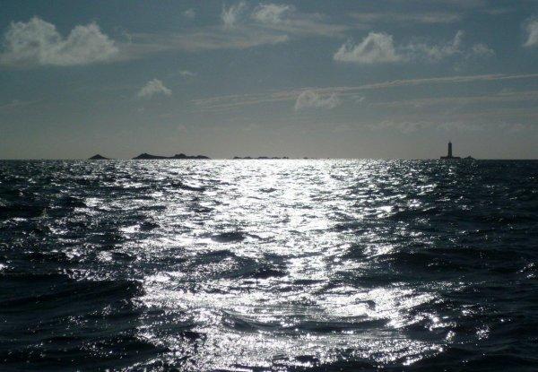 Pêche en mer 28 juillet 2012