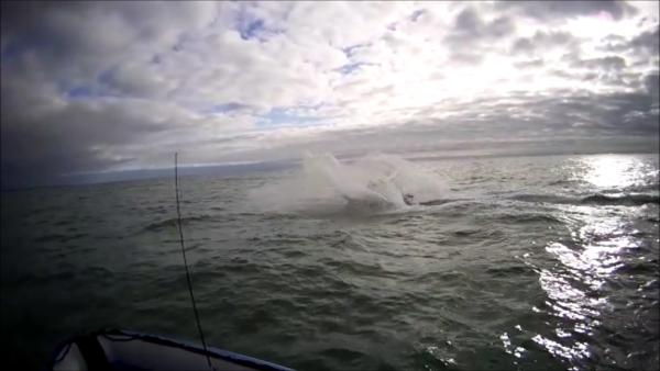 Pêche en mer dimanche 21 déc 2014