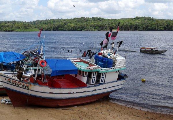 Navigation en Guyane - bateaux de pêche pro