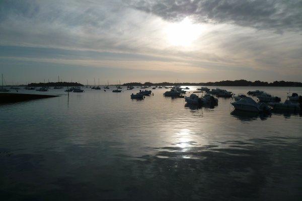 Pêche aux bars golfe du Morbihan 2/7/2016.