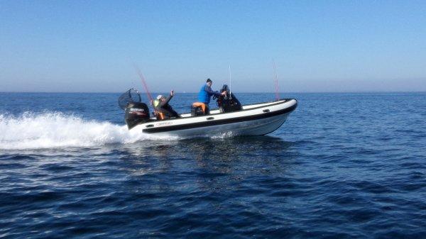 Pêche gros lieus large Morbihan 8/4/2017