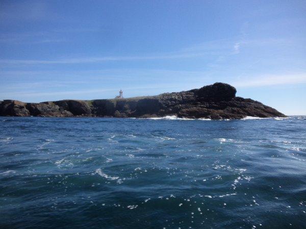 15/7/2017 - Superbe journée de pêche aux lieus au large de Belle Ile