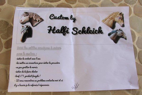 [Colis #1] Superbe échange avec Halfi-Schleich!