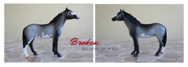 Broken des crins en brosse