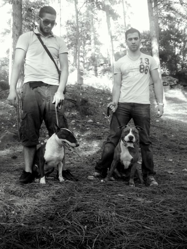 Notre papa avec zara a gauche et Mehdi son copain avec Tysa a droite :D 8-p