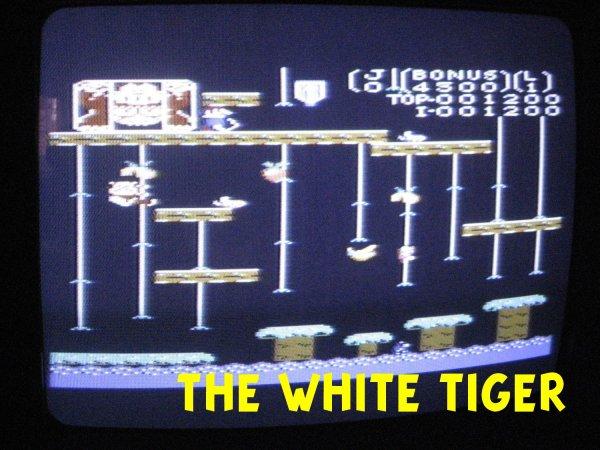 Lot console vintage Atari 7800 + 10 jeux comme neuf