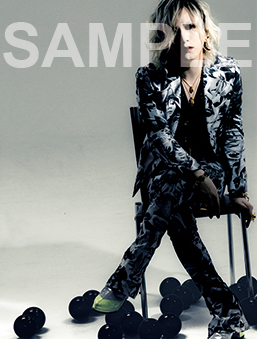 Shoxx 248 - Photocards [The GazettE]