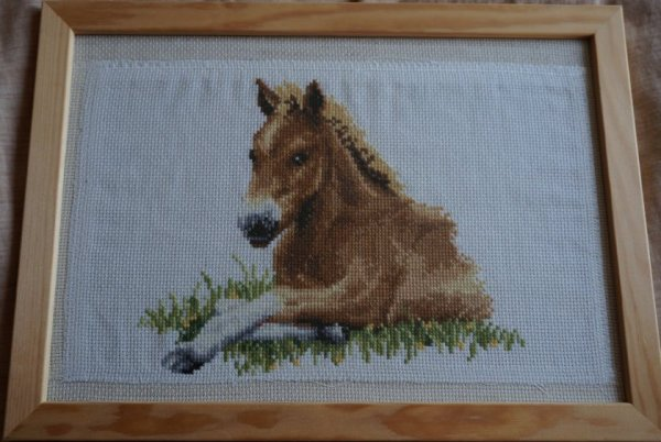 Broderie cheval