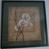 Broderie Orchidées