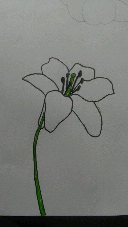 Pour un concours : une fleur de lys