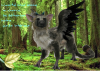 Pour Trico-The-Last-Guardian